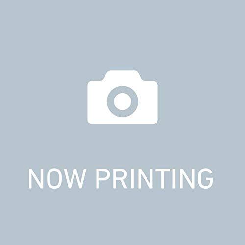 【新品】1/10サイズチェロ Maggioore マジョーレ   B079N314BW