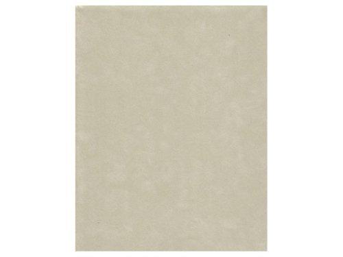 Sew Easy Industries 12-Sheet Velvet Paper, 8.5 by 11-Inch, Celery by Sew Easy Industries