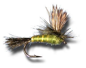 Green Drake Parachute Fly Fishing Fly - Size 8 - 3 Pack Green Drake Flies