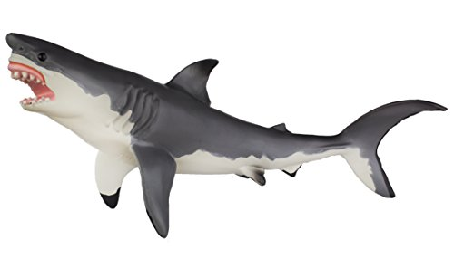 (Safari Ltd  Monterey Bay Aquarium Sea Life Great White Shark)