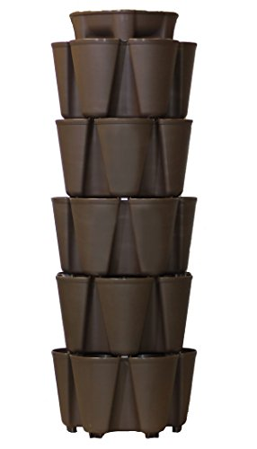 GreenStalk Patented Large 5 Tier Vertical Garden Planter with Patented Internal Watering System Great for Growing a Variety of Strawberries, Vegetables, Herbs, & Flowers (Chocolate Brown) by Greenstalk