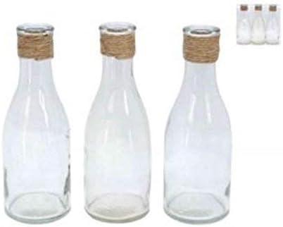 Hunky Dory Gifts Conjunto de 3 floreros de la Botella de Vidrio ...