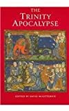 img - for The Trinity Apocalypse (2005-05-13) book / textbook / text book