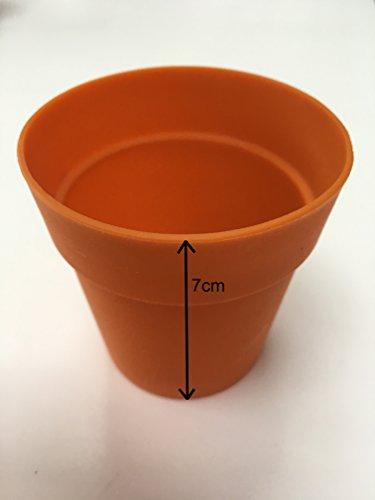 Moldes para magdalenas (silicona), diseño de maceta (seis unidades): Amazon.es: Hogar