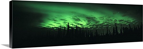 Canvas on Demand Premium Thick-Wrap Canvas Wall Art Print entitled Alaska, Fairbanks, Aurora Borealis, View of the Northern lights 60