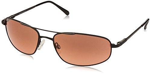 Serengeti Velocity Drivers Gradient Sunglasses (Aviator) by Whole Family