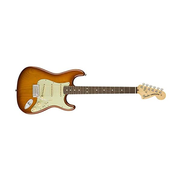 American Performer Stratocaster RW (Honey Burst)
