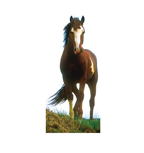 Advanced Graphics Mustang Horse Life Size Cardboard Cutout