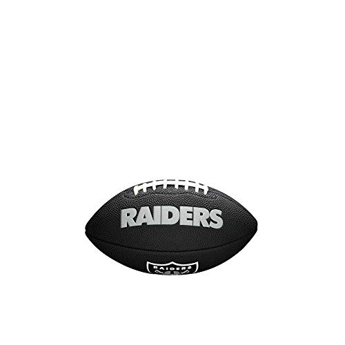 NFL Team Logo Mini Football, Black - Oakland Raiders