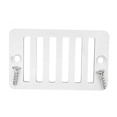 Southeastern Swimming Pool Deck Drain Rectangular Grate 2x4 with Screws Replacement for Hayward SP1019BA: Garden & Outdoor