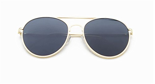 GAMT New Reflective Cateye Aviator Sunglasses for Men and Women UV400 - Glasses Police Online