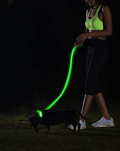 Image of Illumiseen LED Dog Leash - USB Rechargeable - Your Dog Will Be More Visible & Safe - 6 Colors (Red, Blue, Green, Pink, Orange & Yellow) - Perfect to Use with Our Matching Collar (4 Feet, Green)