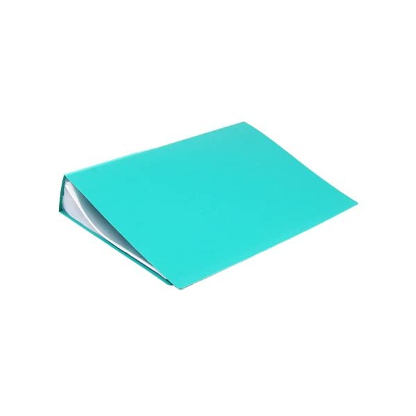 DishanKart Kolor Nine Premium Quality A4 Display Book Pack of 2, Assorted Colors, Office Supplies, School, Document Holder (100 Pockets) 2