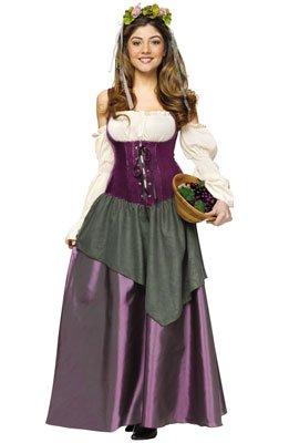 Fun World Women's Tavern Wench Costume, Multi, Medium (Bar Maid Halloween Costume)