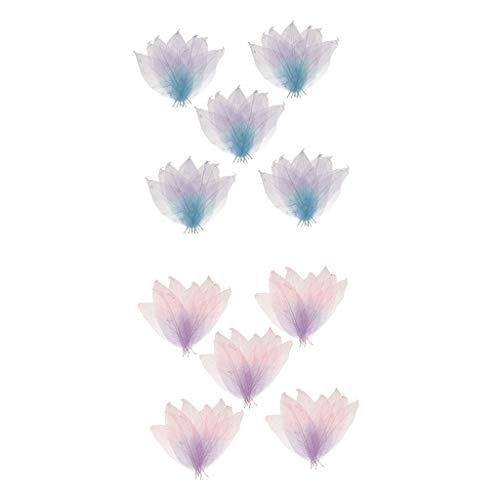 (Prettyia 100pcs Natural Magnolia Skeleton Leaf Leaves Card Scrapbook Craft Supply)