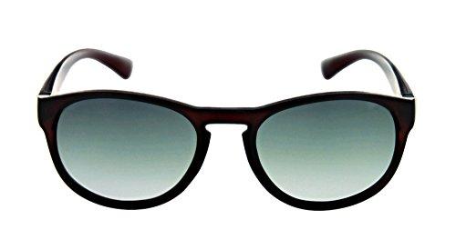 Optic Nerve Firefly Polarized Women's Sunglasses - Matte Crystal Chocolate Frame with Polarized Smoke Fade - Nerve Glasses Sun Optic
