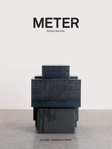 Antony Gormley: Meter - 31pUpyamqbL - Antony Gormley: Meter