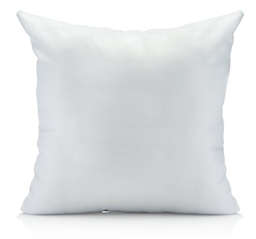Oh Susannah Pillow Insert Washable