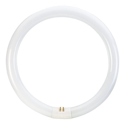 Bell 04194 22 Watt T9 Triphosphor Circular Tube - 4 Pin, 4100K - EU/UK British Electric Lamps CIR40-84-BEL