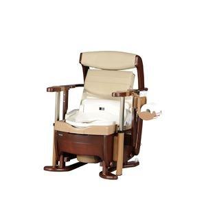 パナソニックエイジフリーライフテック 木製ポータブルトイレ 家具調トイレ〈座楽〉シャワポット ひじ掛け昇降 PN-L21525 ds-1550749   B01JANX2UM