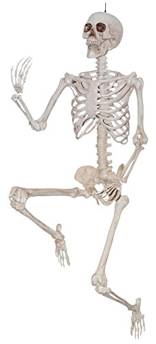 Sunstar Industries 5 Foot Life Size Pose & Hold Skeleton Halloween Decoration Prop