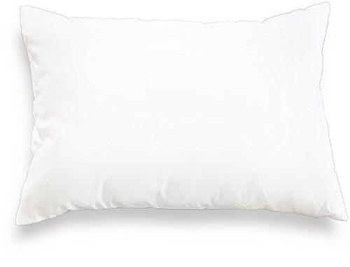 19 x19 pillow inserts - 9