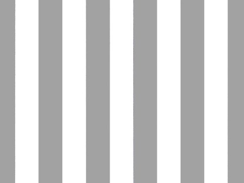 "Silver Metallic Stripes Tissue Paper 20"" X 30"" - 24 Sheet Pa"
