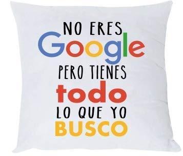 Misorpresa Cojin Frase No Eres Google Pero Tienes Todo lo ...