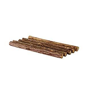 Imported Asiatic Catnip Sticks - Cat's Easter gift Silvervine Cat Treats - Pack of 5 Cat Nip Toys by Atlantic