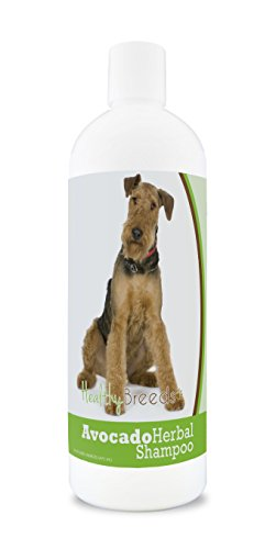 Healthy Breeds Herbal Avocado Dog Shampoo for Dry Itchy Skin for Airedale Terrier  - OVER 200 BREEDS - For Dogs with Allergies or Sensitive Skin - 16 oz