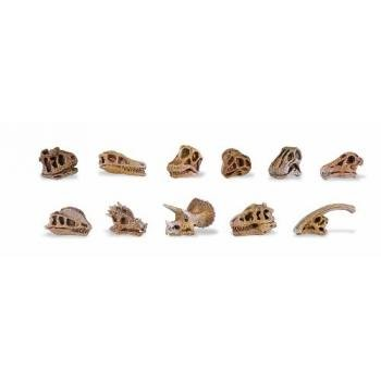 - Safari Ltd  Dino Skulls Bulk Bag