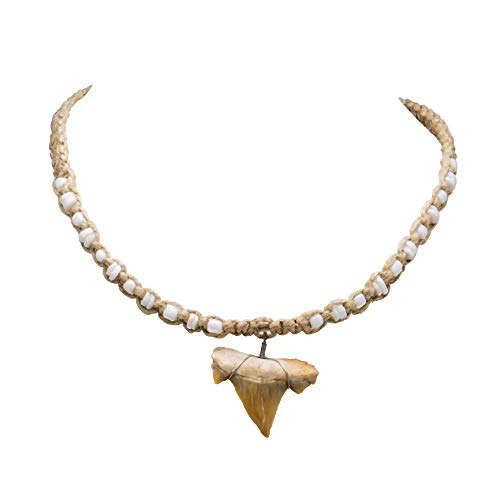 (BlueRica Shark Tooth Pendant on Braided Hemp Necklace with Puka Shell Beads)