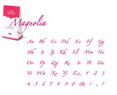 We R Memory Keepers CC-MAGNOLIA-G Alphabet Dies, Magnolia Cookie Cutter Grand Complete (Grand Complete Alphabet Set)