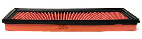 ACDelco A2053C Professional Air Filter