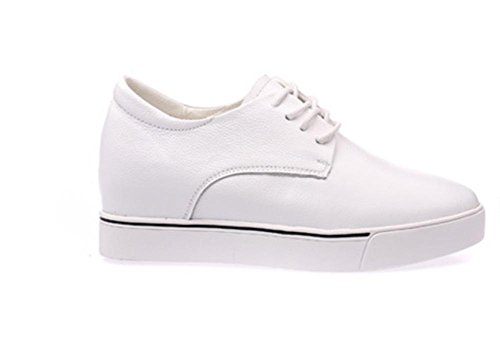 Ms. primavera e l'autunno signora scarpe scarpe ascensore scarpe pizzo , US6 / EU36 / UK4 / CN36