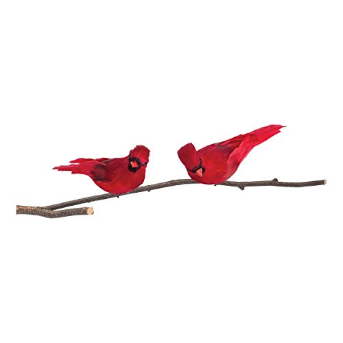 GALLERIE II Red Cardinal Feather Birds Clip Christmas Xmas Ornament A/2 Red Cardinal