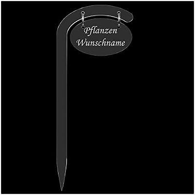 Acrílico cristal – Etiquetas para plantas (jirafa ovalada transparente – Espantapájaros – Jardín Conector, hierbas letreros, Planta, conector – Selección + Nombre Personalizado, Maggikraut: Amazon.es: Jardín