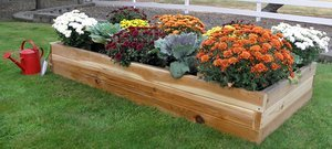 Real Wood Products 36-Inch x 72-Inch Cedar Raised Garden Bed by Real Wood Products