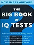 img - for The Big Book of IQ Tests (How Smart Are You?) book / textbook / text book