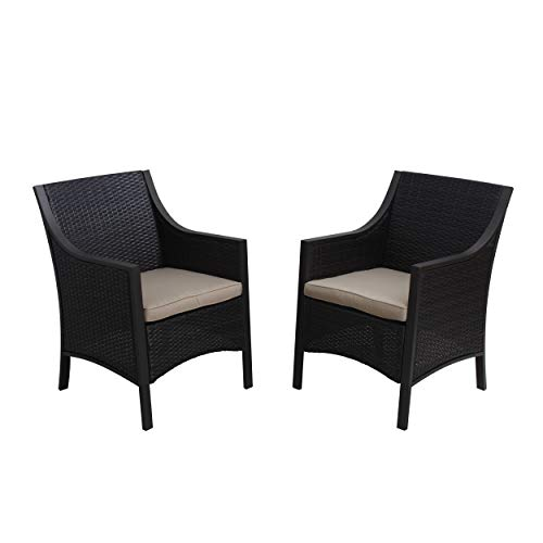 Christopher Knight Home 297001 (Set of 2) Orchard Outdoor Wicker Dining Chair Cushion, Brown/Tan