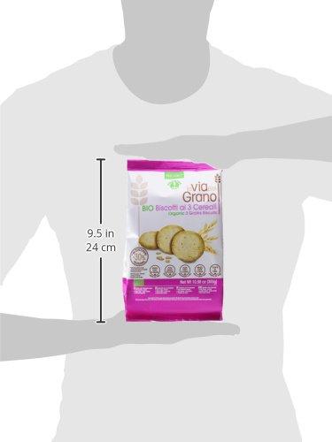 Probios Go Vegan Galletas con Avellanas, con Avena y Cebada (1 x 250 g): Amazon.es: Alimentación y bebidas
