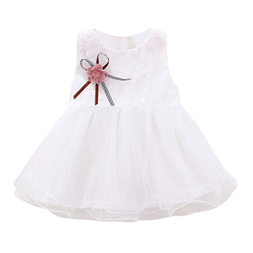 kaifongfu Infant Baby Dress, Kids Sleeveless Solid Color with Floral Embroidered Mesh Skirt Dress Princess ()