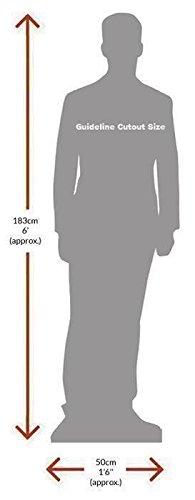 Elijah Wood Life Size Cutout