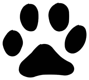 Amazon.com: Dog Cat Black Paw Print Chalkboard Vinyl 22