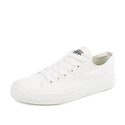 Ocio y zapatos de lona suela gruesa/Zapatos del estudiante blanco/Zapatos de deporte de aire de verano A