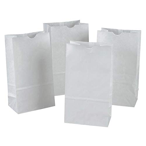(Rainbow PAC72020 Kraft Bag, White, 6