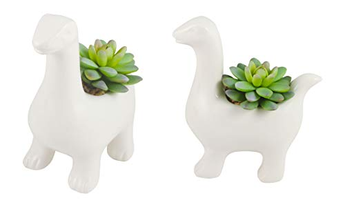 Azzure Home Ceramic Animal Succulent, Plants and Home Decor - (Dinosaur)