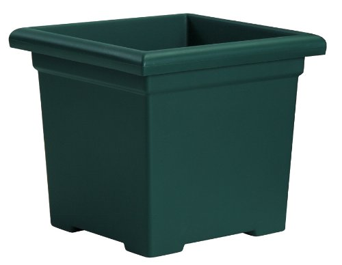 - Akro-Mils ROS15500B91 Accent Square Planter, Evergreen, 15-1/2-Inch