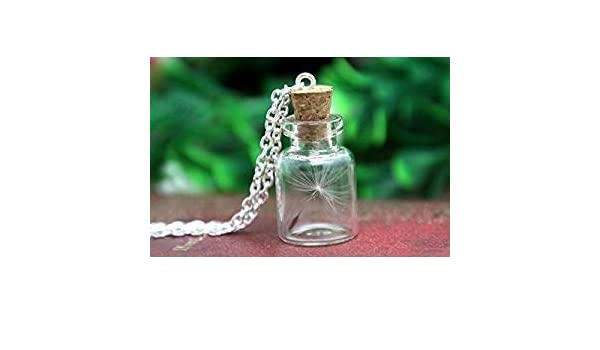Collar de semillas de diente de león real, collar de botella de cristal, joyería botánica: Amazon.es: Hogar
