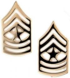US Army Sergeant Major Gold Collar Device Rank Insignia Pair